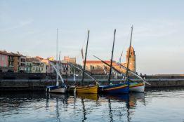 Vue du port de Collioure vendredi